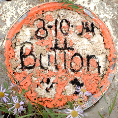 Button (mag3737) Tags: flowers cemetery grave button marker squaredcircle squircle tincup