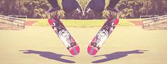 Kick Flip (sns.) Tags: life kick flip element elemen