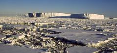 Adare Peninsula (ropergees) Tags: 2003 sea ross antarctica nz bec peninsula adare