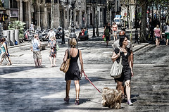 Barcelone #61