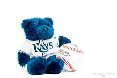 High Key Rays Bear (skippys1229) Tags: canon toy baseball florida highkey studioshot rays whiteonwhite ocala hss stuffedbear 3052 52weeks lglass 70d canonef24105mmf4lisusm strobist ocalafl ocalaflorida 52weeksproject tampabayrays canon70d sliderssunday raysbear 52weeksof2014