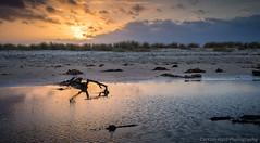 PC280011 (Carsten Hvid) Tags: sunset cloud beach dune skagen grenen adobelightroom nikcolorefexpro leicadgsummilux25mmf14 olympusomdem5