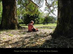 Parque Eva hajduk 11 Ranelagh medio  - Diaz D e Vivar Gustavo (Diaz De Vivar Gustavo) Tags: parque green argentina de flickr arboles martin buenos aires gustavo imagenes diaz ranelagh vivar plasza