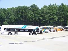103_5612 (Metro Atlanta Transit Productions) Tags: new bus train ga la flyer natural state metro five gas short points orion northamerica marta vii cng winnpeg 1427 c40 nfi d40 1480s 1400s d40lf lowfloor 1401 1481 c40lf martatrain 07501 martabus xcelsior xn40 martanewbus xn35 marta1500s marta1400smartaxcesiorbus