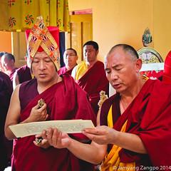 Chime Phagme Nyingtig Drupchen 2014 (jamyang190) Tags: india buddha buddhist indian buddhism tibet monks pooja lama ritual tibetan himachal puja bir rinpoche himachalpradesh  sakya tibetanbuddhism vajrayana    whitetara tibetanbuddhist   drupchen drubchen sakyatrizin    dzongsarkhyentserinpoche     sakyapa    orgyentobgyalrinpoche   chokingrinpoche        chimephakmenyingtik