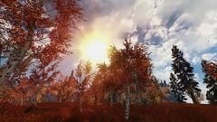 Skyrim West Rift Sun 02 (Isvvc_) Tags: autumn forest screenshot enb rift realvision skyrim