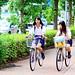 High School Girls Riding on Bicycles / 自転車に乗る女子高生