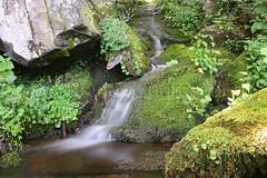 Ruscello al Lago Santo (settebello301) Tags: appenninotoscoemiliano cascata lagosanto cascatella appenninoparmense parcocentolaghi