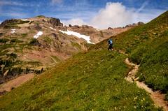 Lily Basin Trail (Tom Hilton) Tags: color cascades goatrockswilderness
