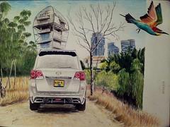 #drawing #drawingcars #toyota #landcruiser #israel #telaviv #birds #beeeater #europeanbeeeater #lake #nature #art (שst457) Tags: lake art nature birds israel telaviv drawing toyota landcruiser beeeater europeanbeeeater drawingcars