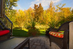 Fall colours in the rear yard (thomevered) Tags: ontario canada beautiful pretty guelph fallcolours