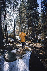 spread love (Philipp Sarmiento) Tags: travel philipp sarmiento photographer explorer canon 5d mark3 dji phantom 3 landscape drohne forest arbersee bavaria regensburg
