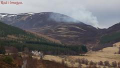 The heather burn. (northernkite) Tags: braemar aberdeenshire scotland hills smoke trees road deadend river snow