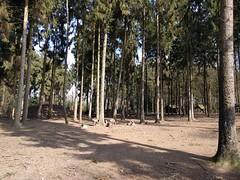 IMG_20170326_121345 (paddy75) Tags: duitsland reken wildparkfrankenhof