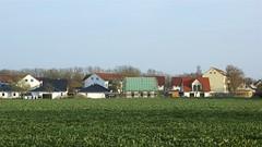 Wohnhäuser an der Bergener Straße Altefähr Bild 3 (Carl-Ernst Stahnke) Tags: natur altefähr eigenheime wohnhäuser bauherren ziegeldach vermietung kauf grundstücke wohnblöcke landschaft