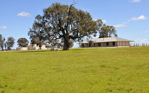 593 Spring Creek Road, Gulgong NSW