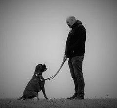 Conversation! (joypicture1) Tags: dog hundmensch hund haustier animals pets