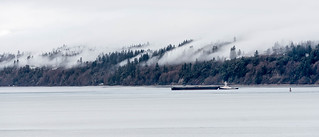 Tug On a Gray Day