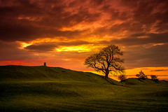 Burn the Sky (unciepaul) Tags: sunset trees hillside burrough hill calm allalone peacefulness burning sky clouds landscape saturday evening outabout nikond800 tripod low battery sheep poo tred carefully