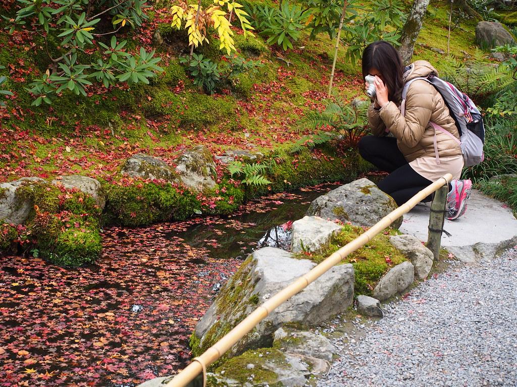 The World\'s Best Photos of kyoto and mzuikodigitaled1240mmf28pro ...