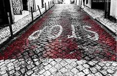 STOP. A vida parou ou foi o automóvel? (STOP. Has life stopped or was the car gone?) (Paullus23) Tags: stop street white red parar rua branco vernelho