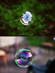 bubbles (emmakatka) Tags: summer reflection grass bokeh bubbles 50mm14 bubble trippy