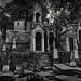 Montmartre cemetery - Paris