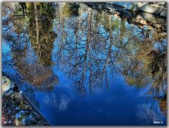 Más reflejos en la ría artificial... (Nati C.) Tags: madrid parque agua árboles retiro hdr reflejos cruzadas cruzadasgold