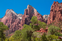 The Three Patriarchs (cindytaylor) Tags: red utah hiking canyon zionnationalpark redrock rockformations
