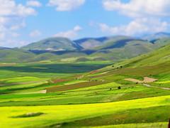 Italy, Umbria, Norcia -Piana di Castelluccio -by Gianni Del Bufalo CC BY 4.0