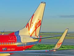 Suzzie, Suzzie, Suzzie! (VSXLG) Tags: blue flying dj sydney australia virgin your va boeing airlines now syd velocity voz maiden 737 winglets 737800 richardbranson suzzie vozzy