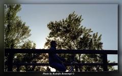 Mimetismo in bicicletta (Rodolfo Bontempi photos (900.000 views)) Tags: panorama film nature alberi analog photography photo flickr foto fotografie pentax famous photographers natura bici mm analogue fotografia 50 pentaxmesuper smc paesaggio analogica 135mm fotografi bicicletta formato pellicola f17 artistiche fotoartistiche famosi pentaxart rodolfobontempi