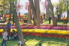 La Rosa Enflorece (recepmemik) Tags: turkey tulips trkiye istanbul emirgan laleler recepmemik