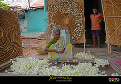 """""""THAT SILK SCARF YOU ARE WEARING PROBABLY CAME FROM HERE..."""" (GOPAN G. NAIR [ GOPS Photography ]) Tags: india rural photography women farming silk worm karnataka nair empowerment gops sericulture gopan gopsorg gopangnair gopsphotography"""