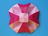 Fiore Geometrico Bicolore - Bicolor Geometric Flower