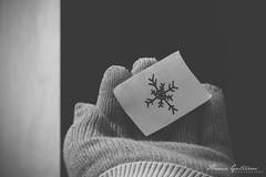 08/365 (Flatografando) Tags: cold frio canonsx500 flatografando 365diasdefotografias