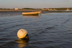 73 (Jonathan Lurie) Tags: beach june evening sand unitedstates dusk capecod massachusetts cape mayo oyster cod wellfleet buoyant mayobeach