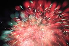 2014/08/07 Aomori Nebuta Festival Fireworks (r280labs) Tags: festival japan fireworks aomori  matsuri  nebuta