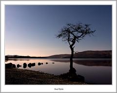Loch Lomond in Moonlight (flatfoot471) Tags: night rural landscape scotland spring lochlomond stirlingshire millarochybay stirlinghsire