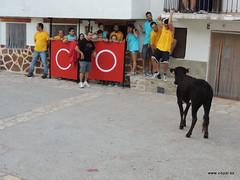 FiestasVispal14-097