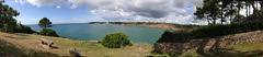 Moelan sur mer - Kerfany les pins, panorama