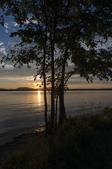 Lac Brome (monilague) Tags: road old sunset summer lake tree church water truck season soleil coucher lac route camion t paysage arbre glise tress vieux saison roas lansdcape brome eaus