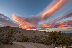 Joshua Tree Sunset (kevin-palmer) Tags: california road blue sunset red summer sky orange chihuahua mountains clouds evening nationalpark colorful desert dusk path joshuatree vivid august hills mojave joshuatreenationalpark keysview kevinpalmer pentaxk5 samyang10mmf28