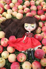 Red Delicious Blythe 4
