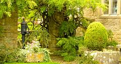AROUND BOURTON (chris .p) Tags: uk summer england garden nikon august cotswolds gloucestershire gb 2014 bourtononthewater d610 28to300