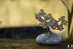 Bejeweled (Rodrock86) Tags: tree stone daylight nikon artificial wires copper jewel artificiallife nikond3200 ishootraw d3200 nikonlover