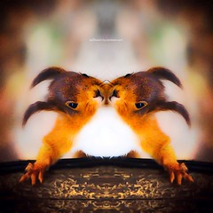 h o r n s q w i r l (epiclectic) Tags: reflection animal photoshop mirror design graphic wildlife humor perspective manipulation images symmetry reflect symmetrical mutant twisted enhancement epiclecticcom epiflection epiflectionbyepiclecticcom