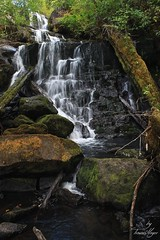 The Pacific Northwest Everybody (meyer_trevor) Tags: oregon canon waterfall hiking secret exploring