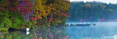 A u t u m n M u s i c (AnthonyGinmanPhotography) Tags: trees panorama lake japan boats jetty au olympus panoramic autumncolours nagano naganoprefecture novoflex shirakomaike olympus1454mmf28 olympuse30 sakuho