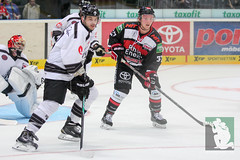 "DEL15 Kölner Haie vs. Thomas Sabo Ice Tigers 19.09.2014 073.jpg • <a style=""font-size:0.8em;"" href=""http://www.flickr.com/photos/64442770@N03/15291617202/"" target=""_blank"">View on Flickr</a>"